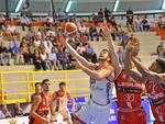 Basket Knights Legnano