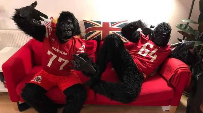 Gorillas Varese alla Great Gorilla Run di Londra