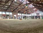 Equieffe Equestrian Centre