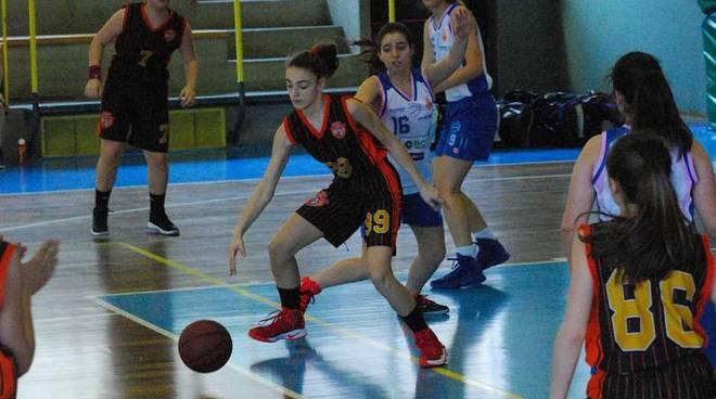 Emma Colombo Bulldog Basket Canegrate