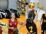 Bulldog Basket Canegrate Under 16