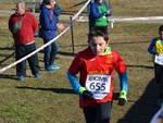 Campaccio 2019 - Le Competizioni Regionali - terza parte