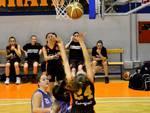 Bulldog Basket Canegrate Under 18