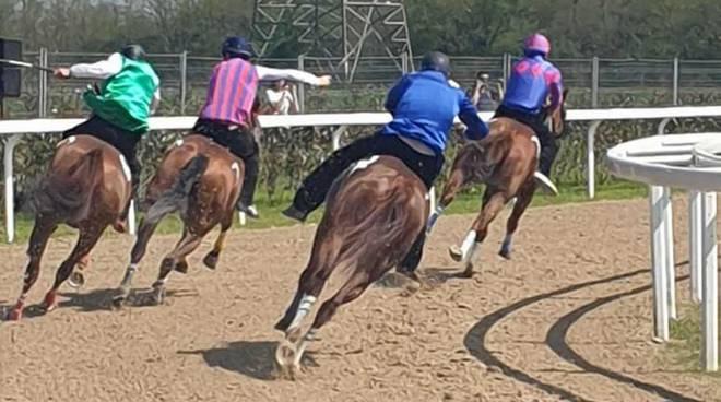 Corse di addestramento Palio di Legnano 20 aprile 2019