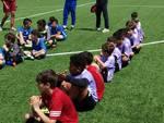 academy lilla