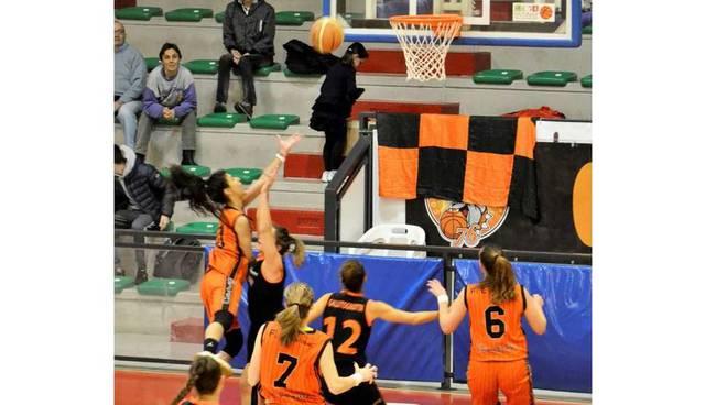 Bulldog Basket Canegrate Serie B 2018/19