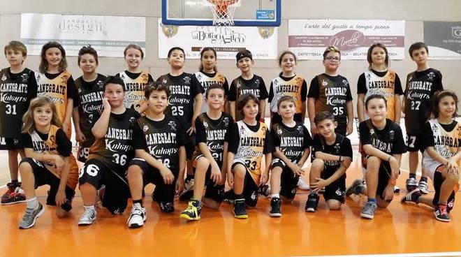 Bulldog Basket Canegrate giovanili