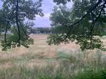 Campo di Via Bainsizza