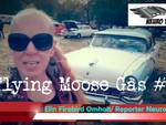 Neuro TV in Norvegia al Flying Moose Gas #4