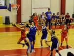 Carola Manzoni Bulldog Basket Canegrate