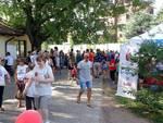 Festa dello Sport e Giornata del Volontariato 2019 Busto Garolfo