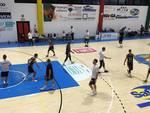 Basketball Gallarate - Knights Legnano 61-69