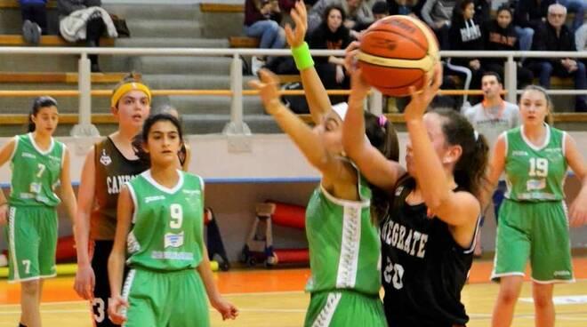 Bulldog Basket Canegrate Unde 14 UISP femminile