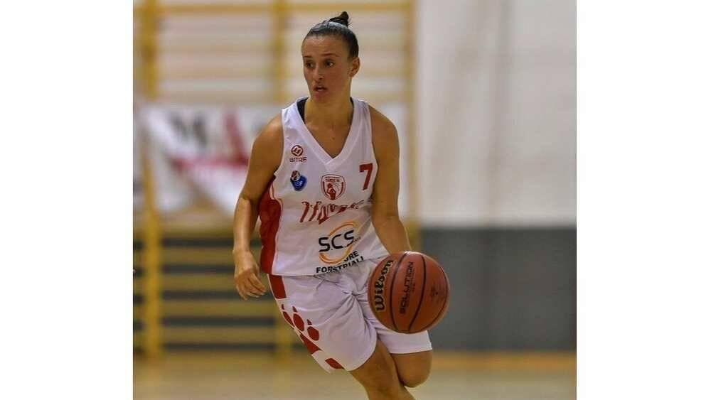 Bulldog Basket Canegrate Alice Biasion