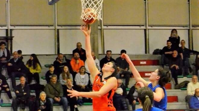 Camilla Cagner Bulldog Basket Canegrate