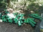Rifiuti abbandonati Parco Alto Milanese