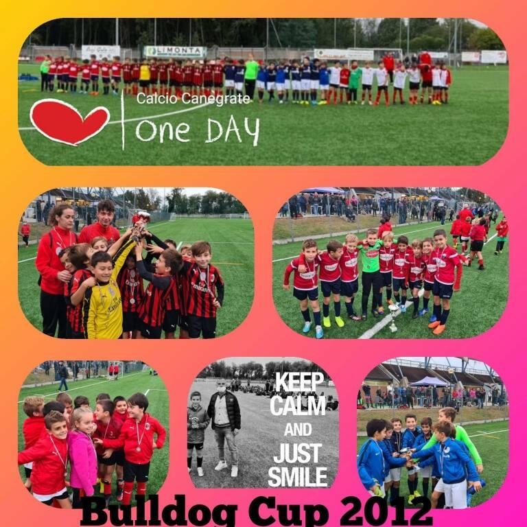 bulldog cup