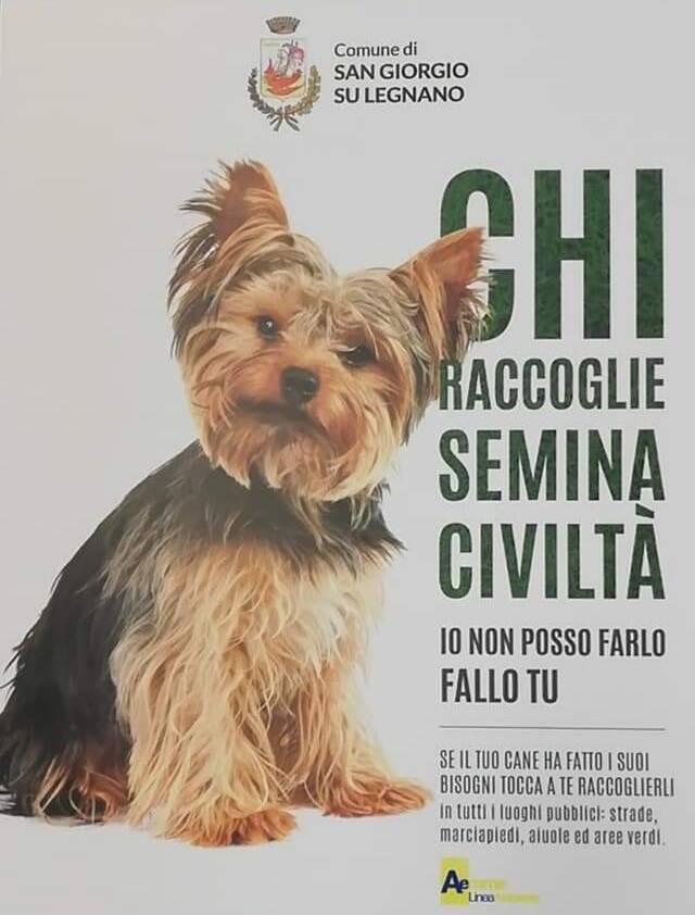 Cani San Giorgio su Legnano