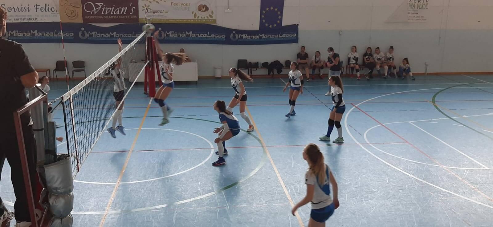 arluno volley